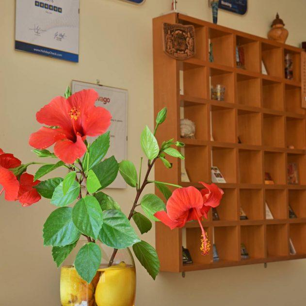 chania-crete-iolkos-hotel-rooms-accomondation-4